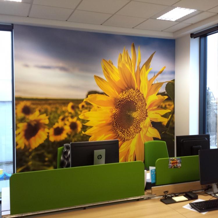 Fototapeta w biurze